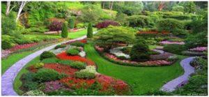 Diseño jardines alicante